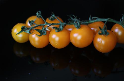 گوجه فرنگی چری