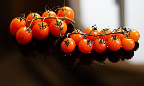 گوجه فرنگی آتاویتا