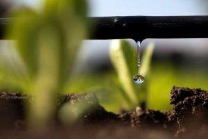 بهینه سازی مصرف آب
